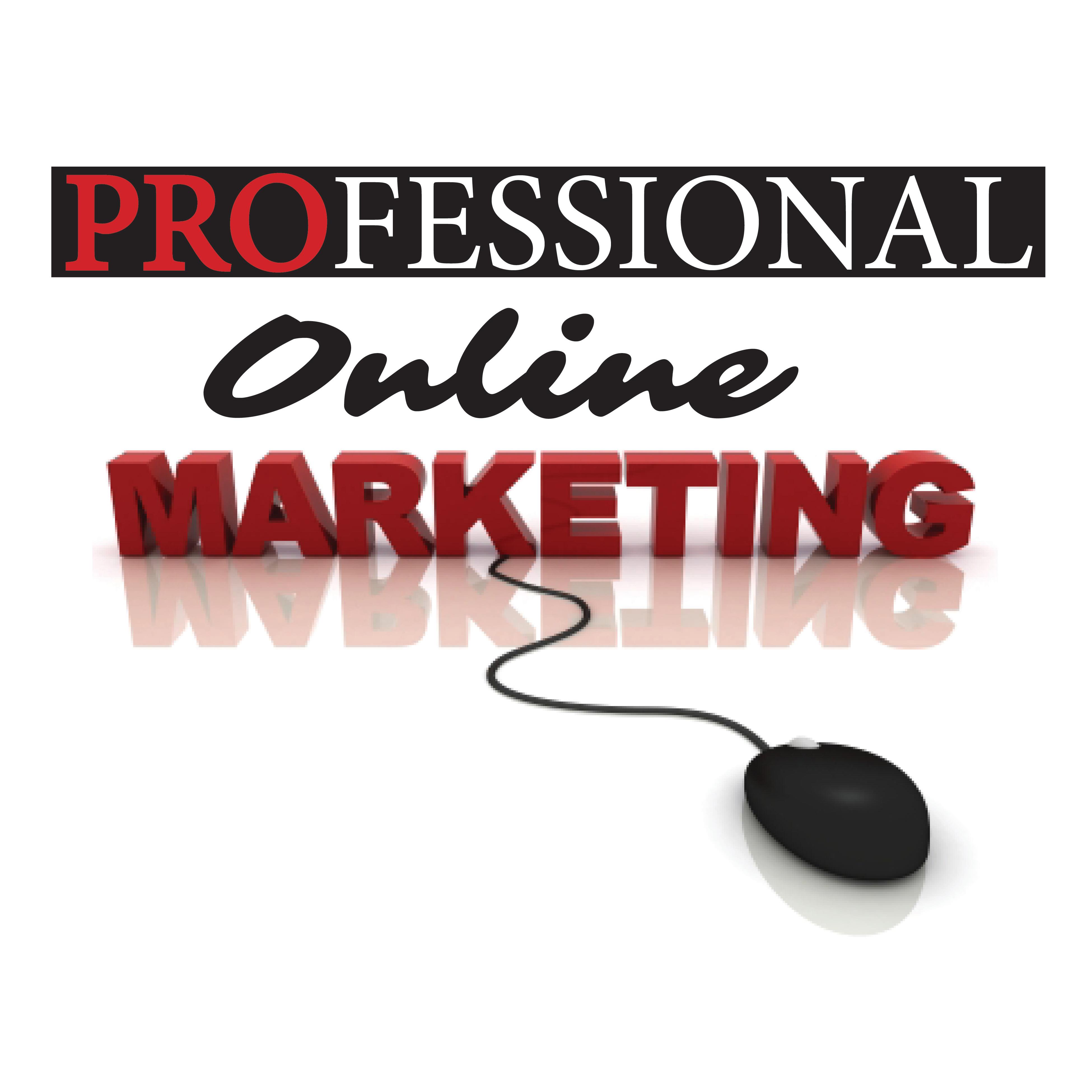 Professional Online Marketing LLC