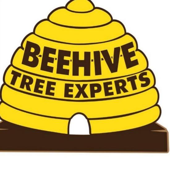 Beehive Tree Experts