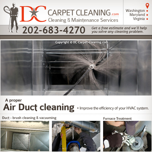 DC Carpet Cleaning image 3