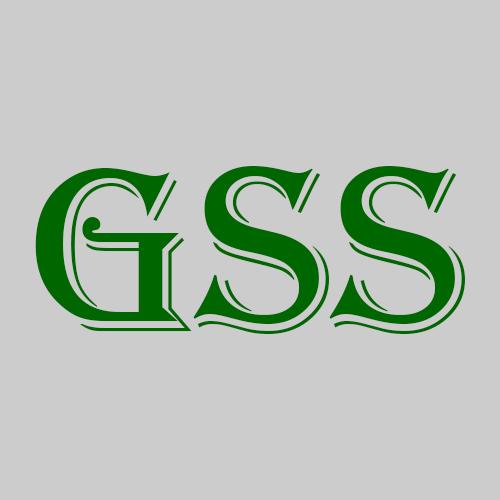 Green Springs Security LLC