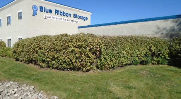 Blue Ribbon Storage image 0