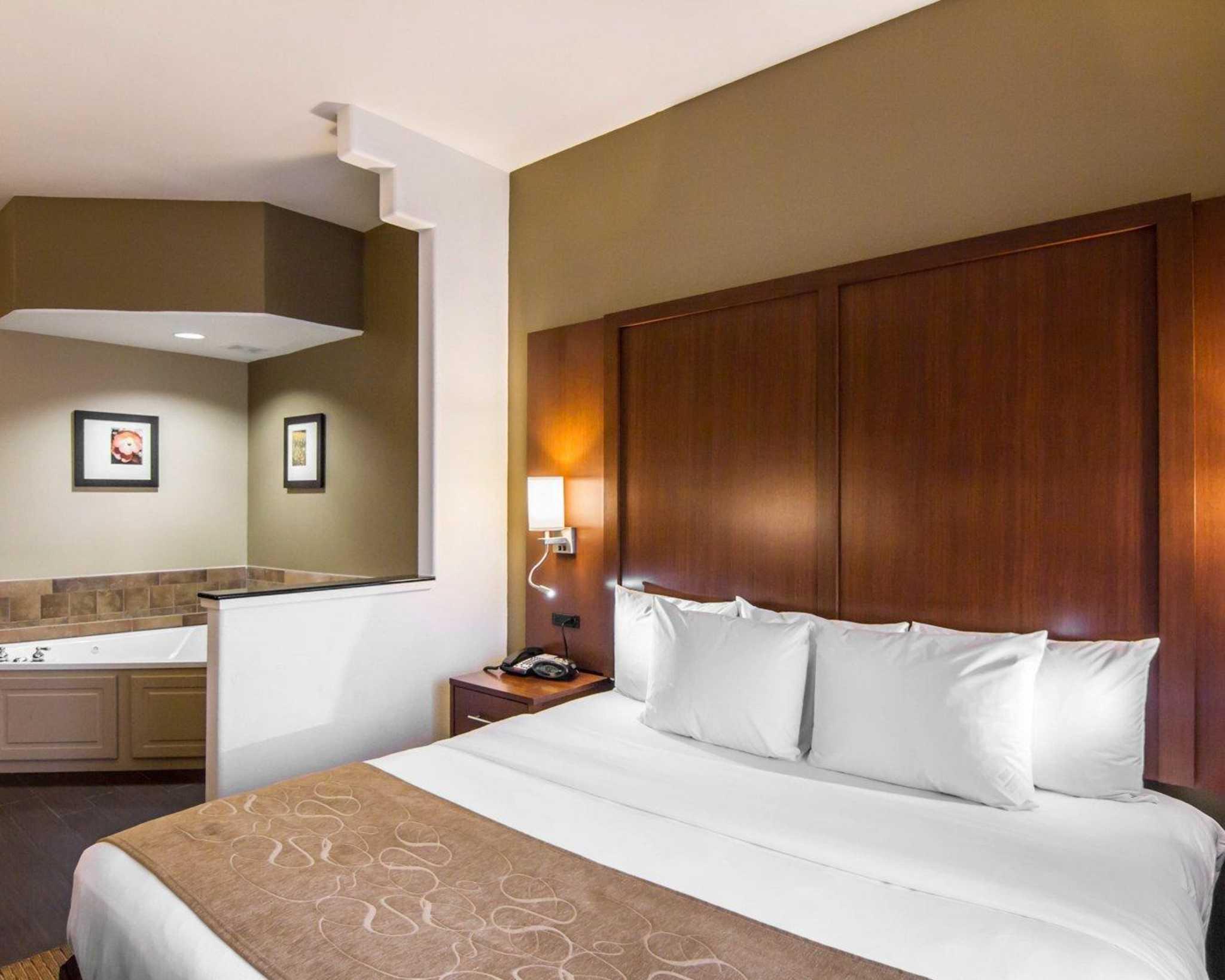 Comfort Suites Marshall image 24