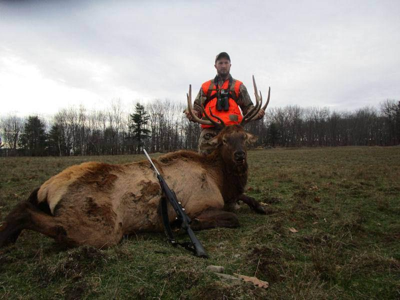 Tioga Boar Hunting image 3