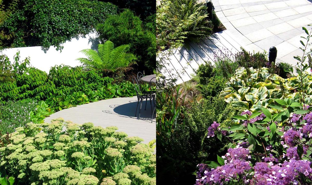 Hugh ryan landscape design in aughrim landscape for Gardening contractors