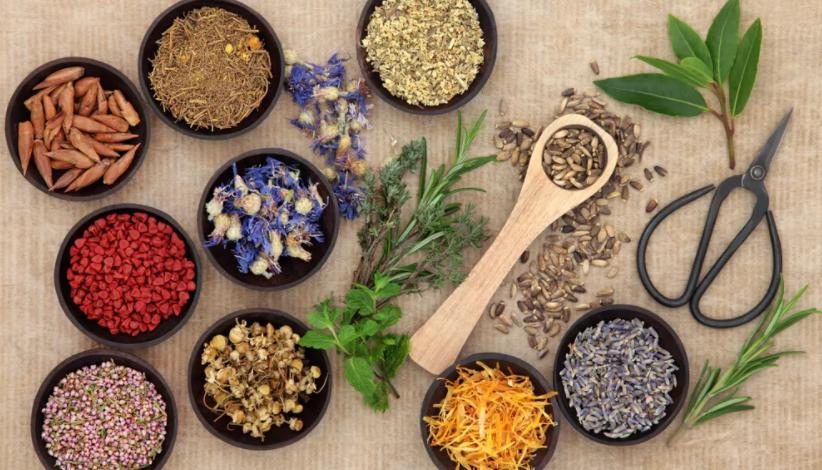 The Herbal Kitchen image 10