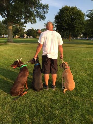 New England Canine image 1