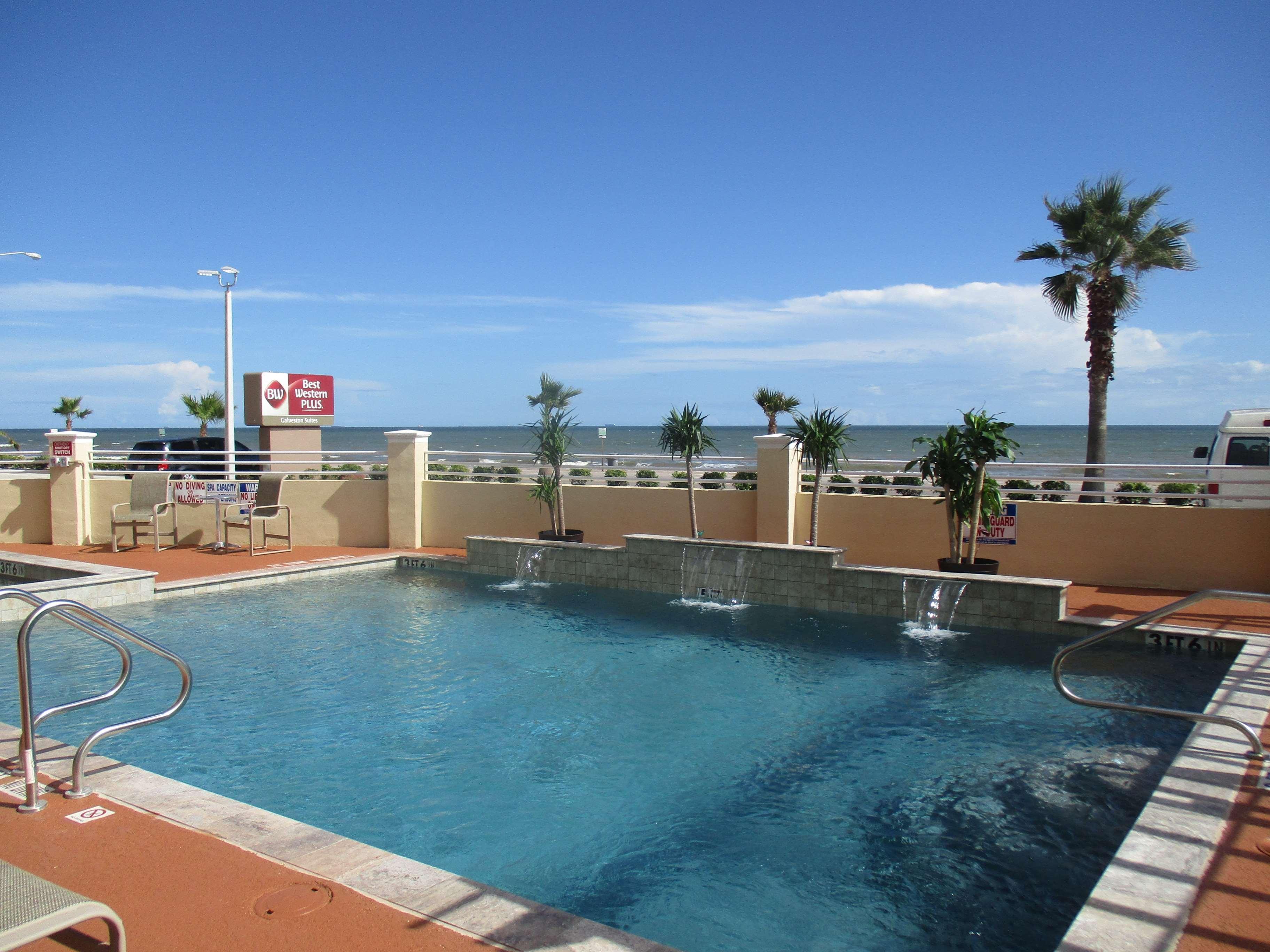 tx background hotel garden decor diver marvelous beautiful hotels beach talks inside palm gallon moody a near galveston biologist gardens