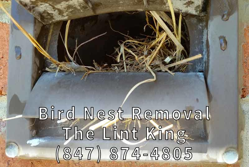 The Lint King Dryer Vent Cleaning Experts. Bird nest removal and vent cleaning.