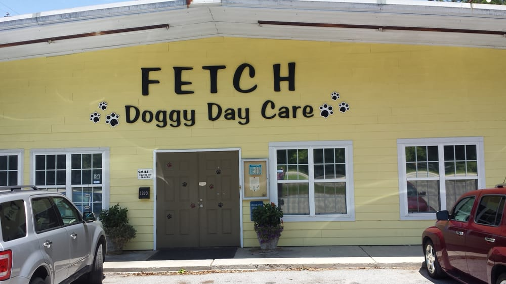 Fetch Doggy Day Care image 1