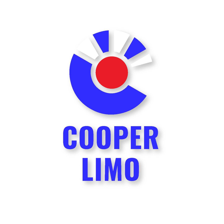 Cooper Limo Black Town Car Limousine Service image 11