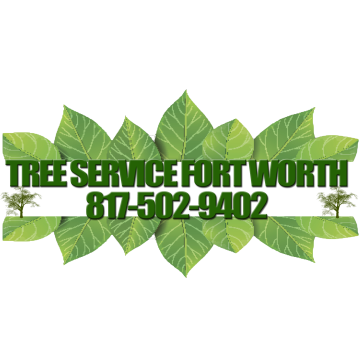 Tree Service Fort Worth