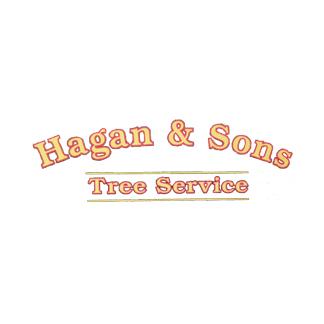 Hagan & Sons Tree Service image 4