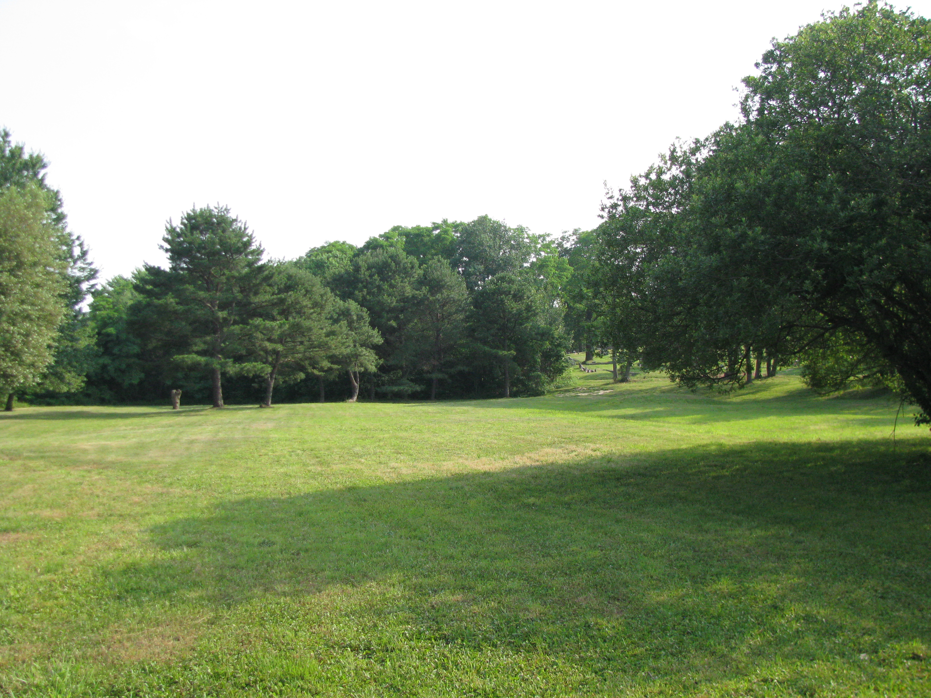 Mount Prospect Cemetery image 4