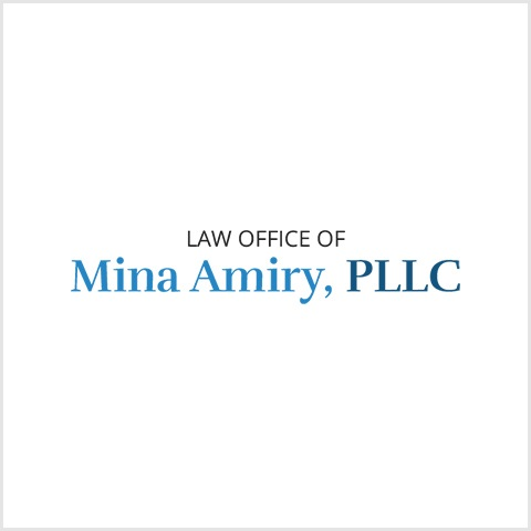 Law Office of Mina Amiry, PLLC