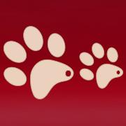 Ruudi Lemmikloomapood Kuressaares (InnoAgents OÜ)