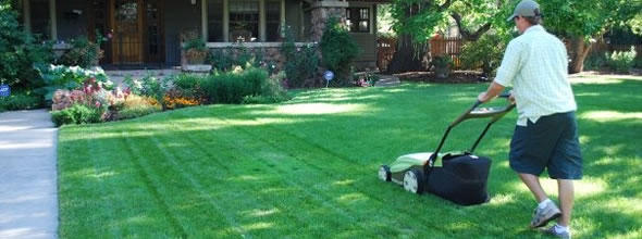Bob's Affordable Lawn Services image 0