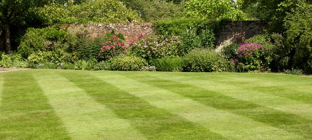 Cutters garden services landscape contractors in for Landscape design courses christchurch nz