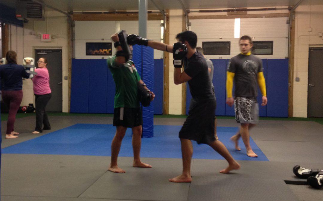 Spartan Mixed Martial Arts image 0