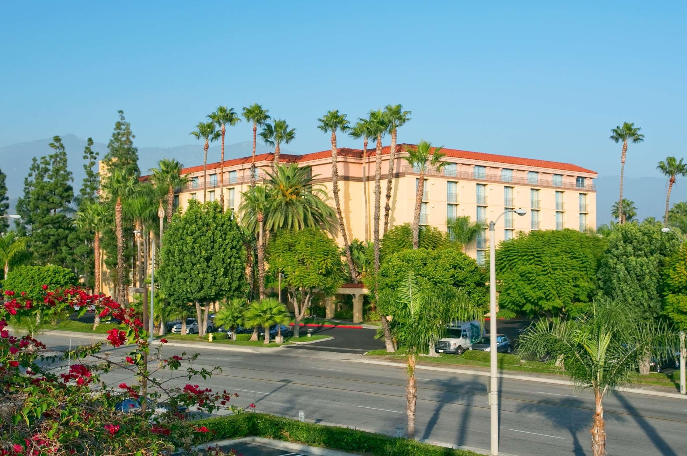 Embassy Suites by Hilton Arcadia Pasadena Area image 3