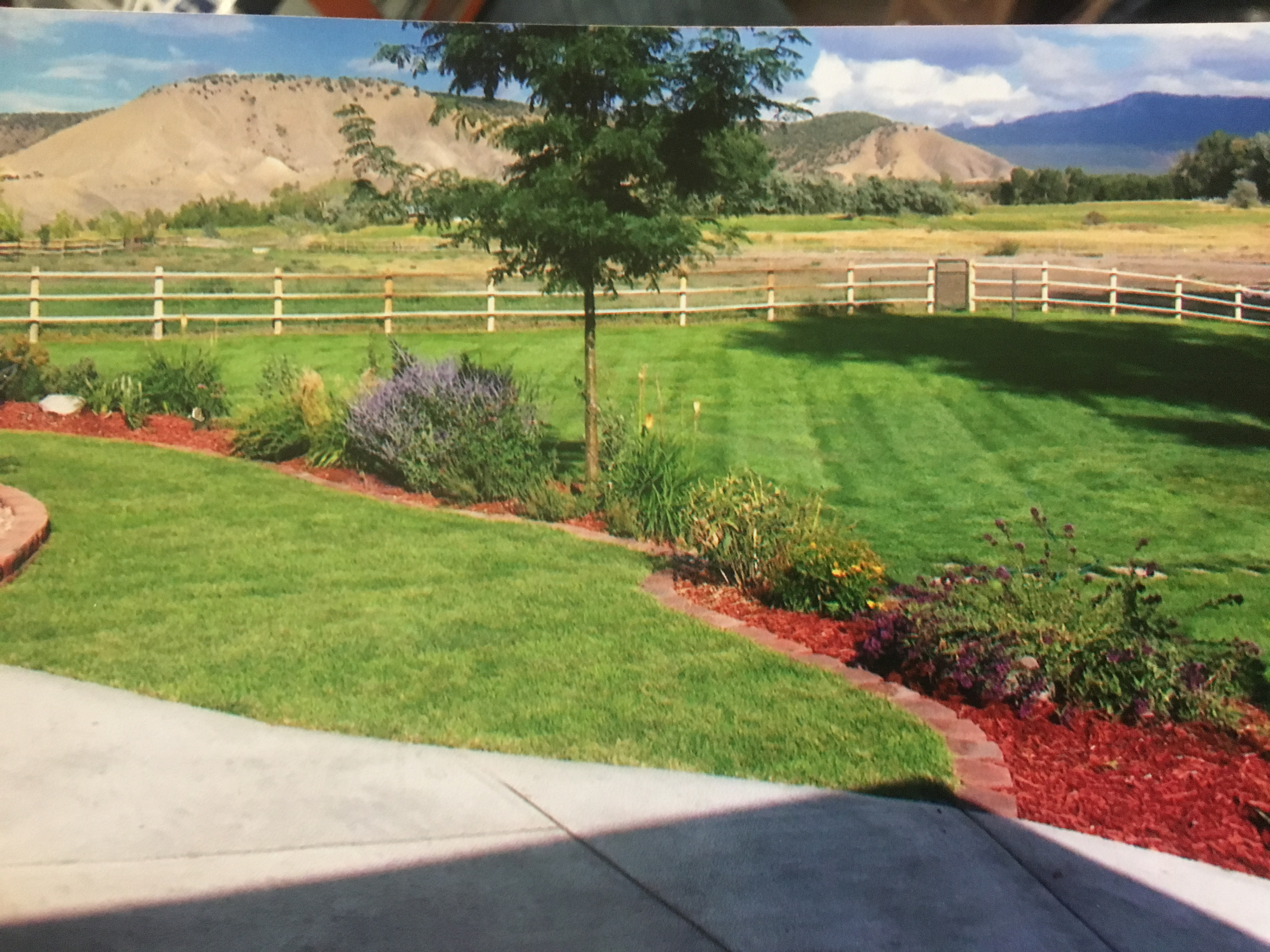 A Plus Landscaping image 1