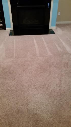 One Stop Carpet Care & Repair image 0