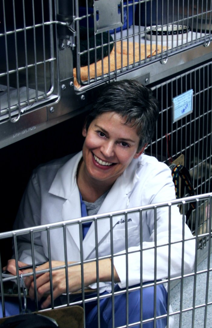 VCA Bay Area Animal Hospital image 5