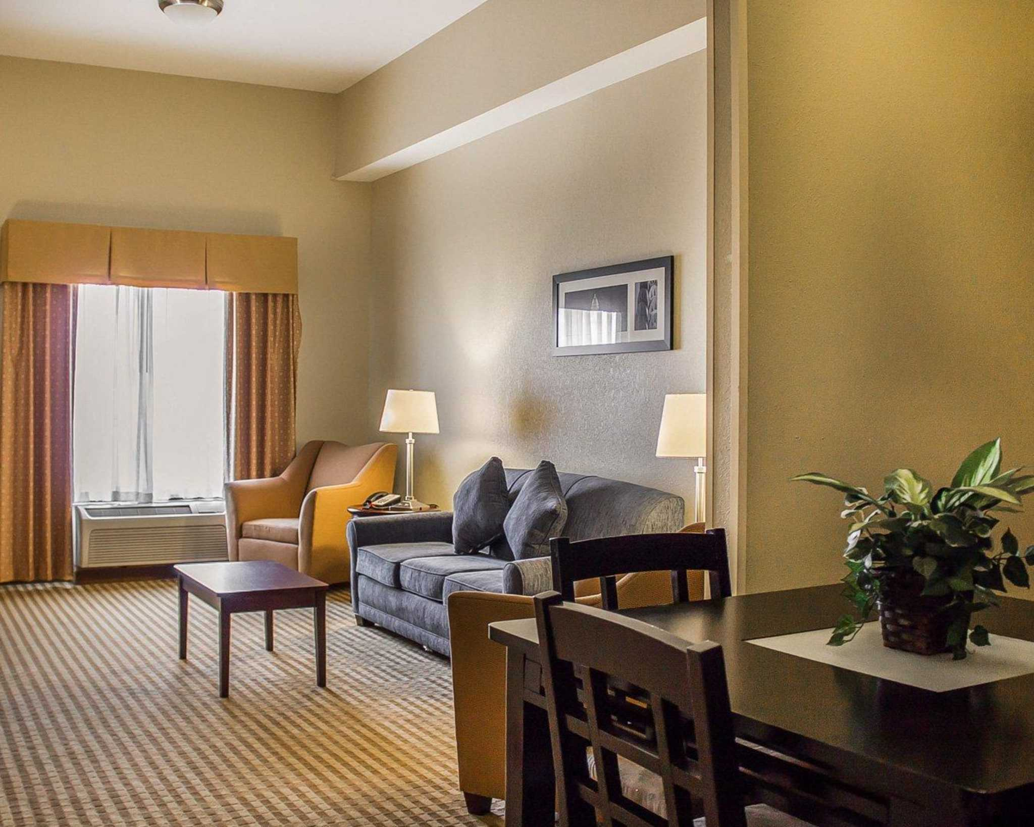 Comfort Suites East Broad at 270 image 19