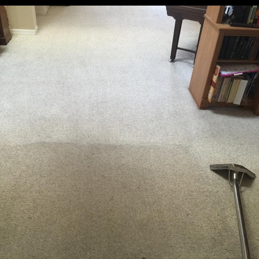 Carpet Cleaning Kissimmee Coupons Near Me In Kissimmee