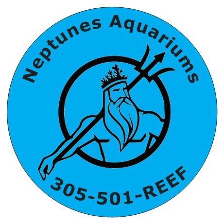 Neptunes Aquariums LLC