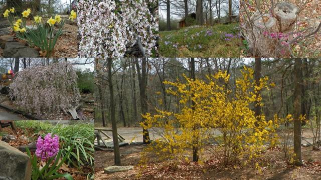Eureka Springs KOA image 0