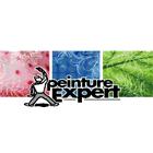 Peinture Expert Inc