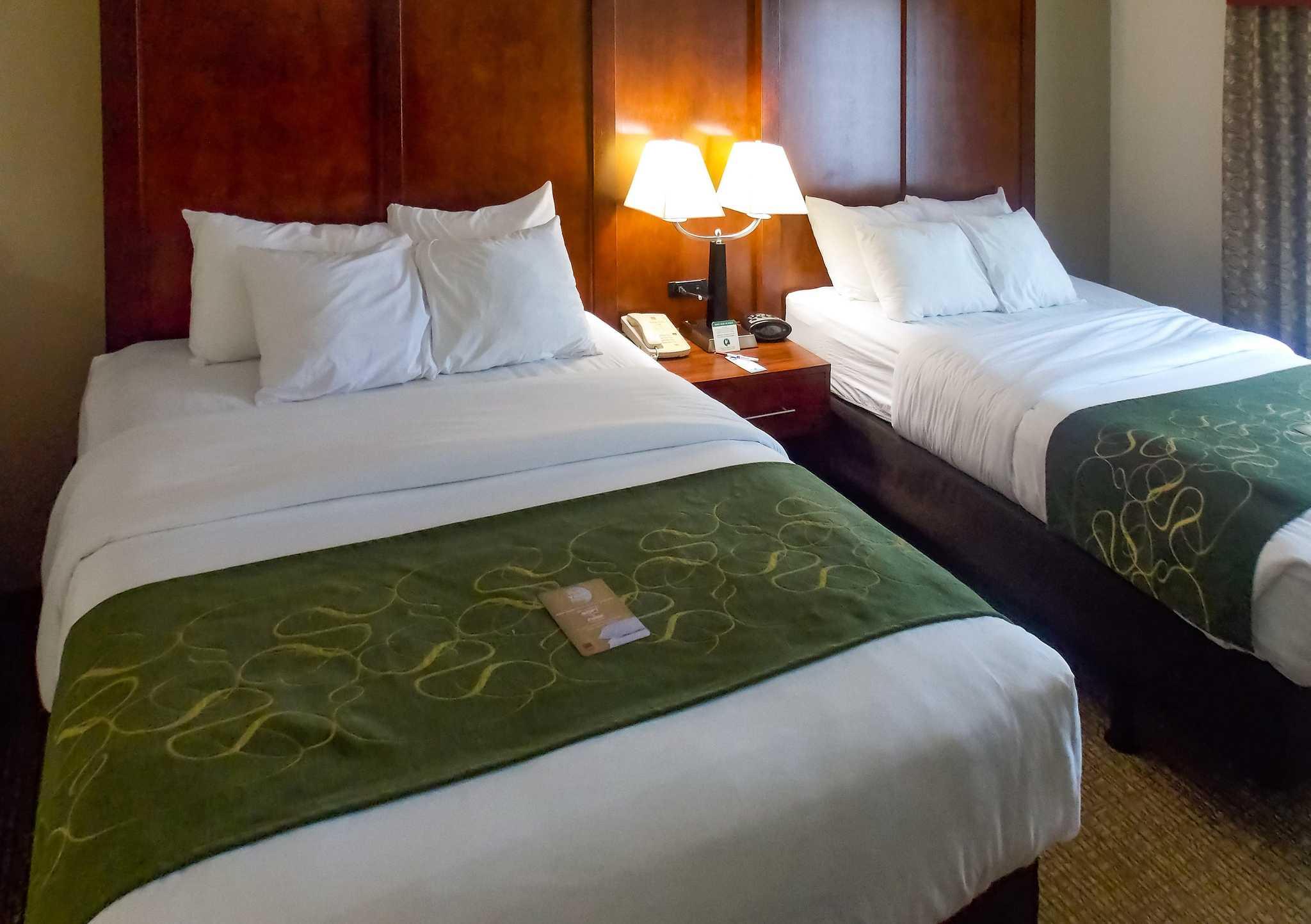Comfort Suites Inn at Ridgewood Farm image 5