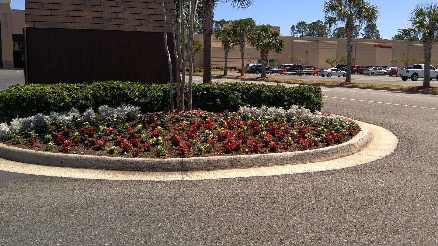 Another Landscape Company Inc Coupons Near Me In Brunswick