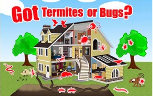 Bichoos Termites & Pest Control image 0