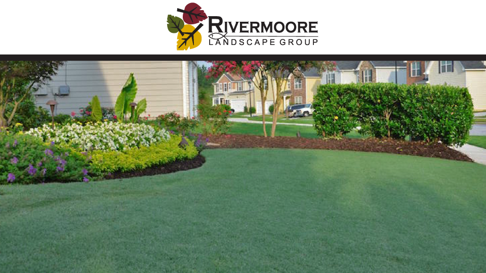Rivermoore Landscape Group image 0