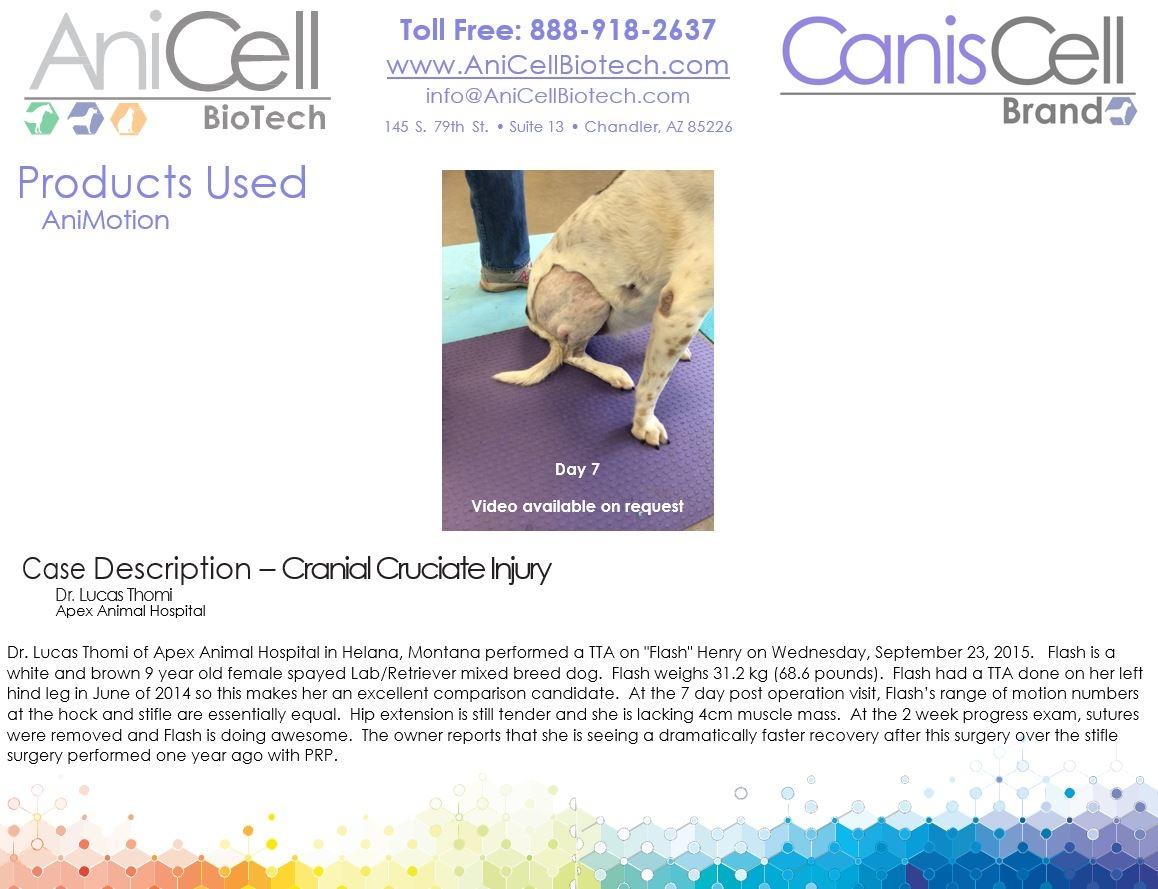 AniCell Biotech, LLC image 3