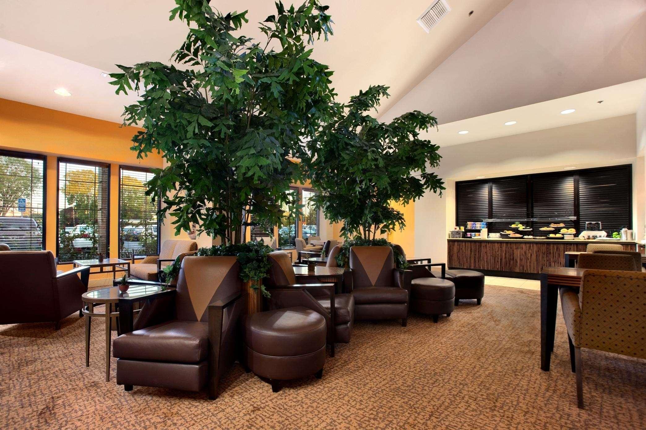 Hilton Stockton image 2