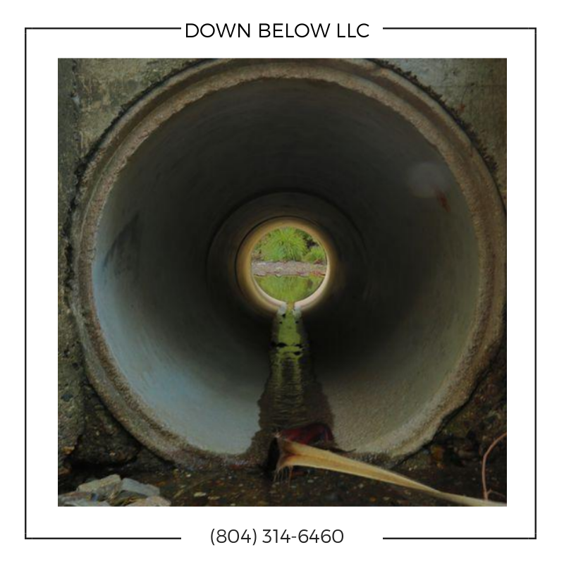 Down Below LLC image 0