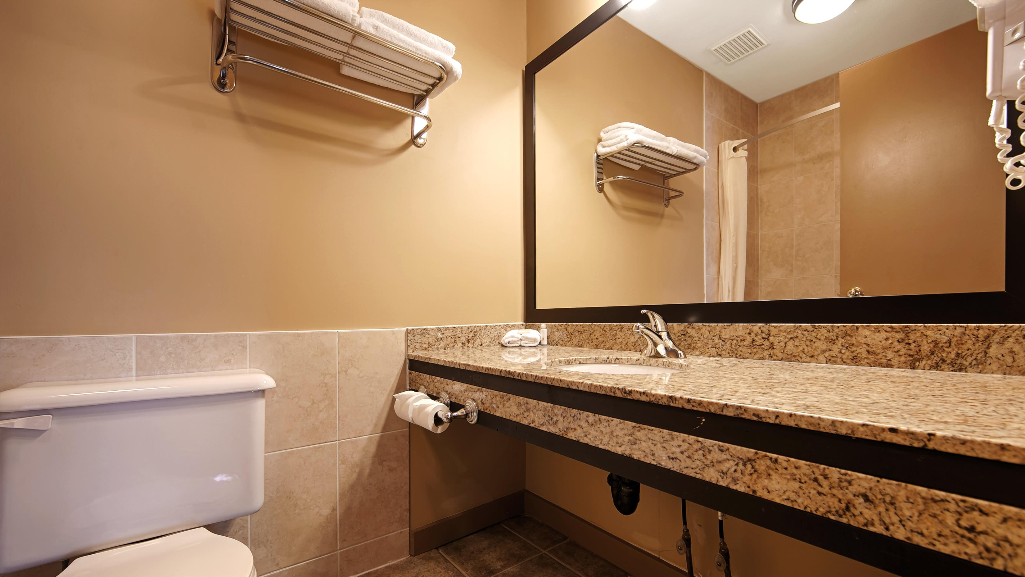 Best Western Maple Ridge Hotel in Maple Ridge: Guest Bathroom