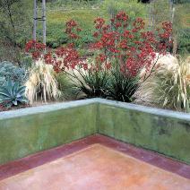 All Seasons Gardening & Landscaping image 20
