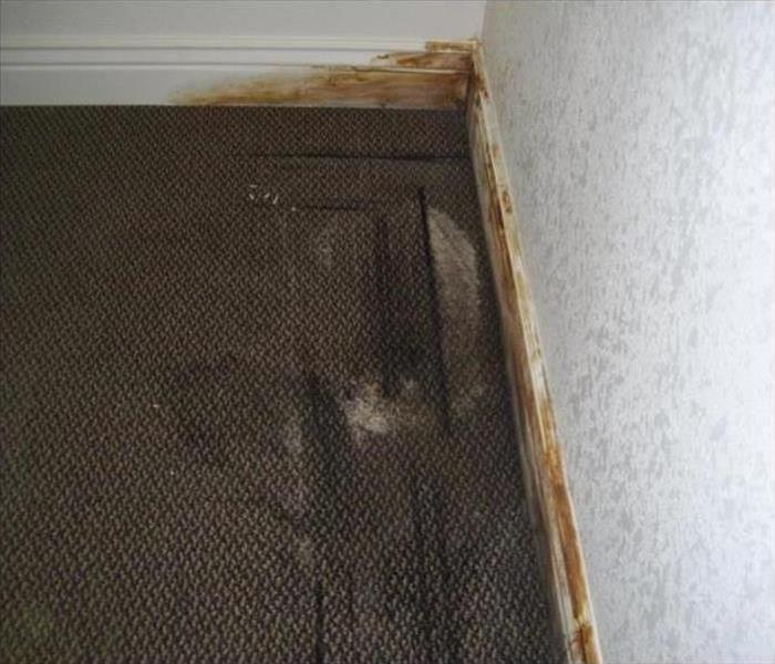 SERVPRO of North Utah County image 22