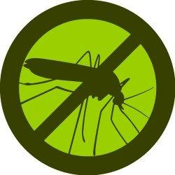 Mosquito Squad of NW San Antonio and The Hill Country image 2