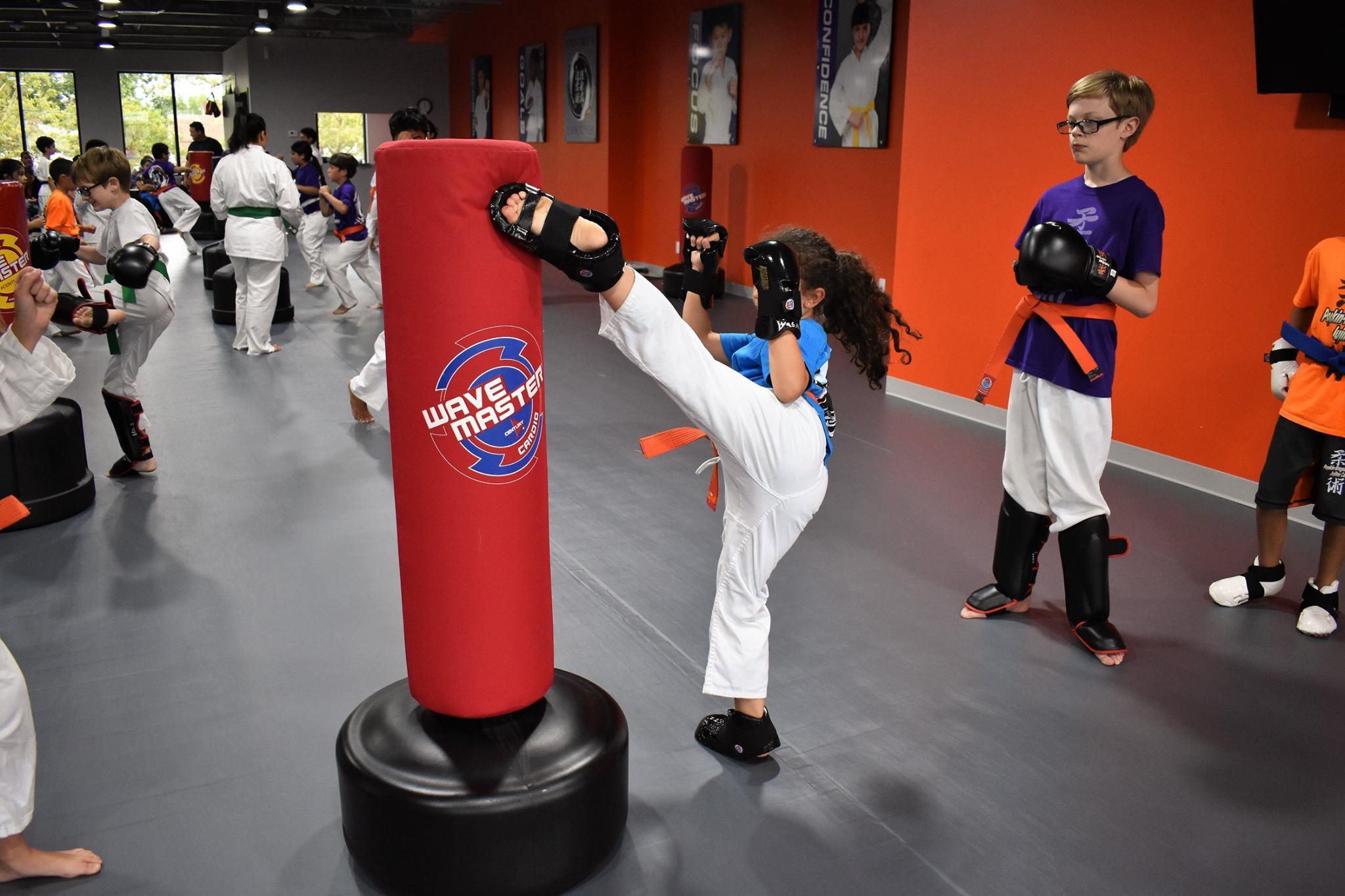 Popkin-Brogna Jujitsu Center image 1