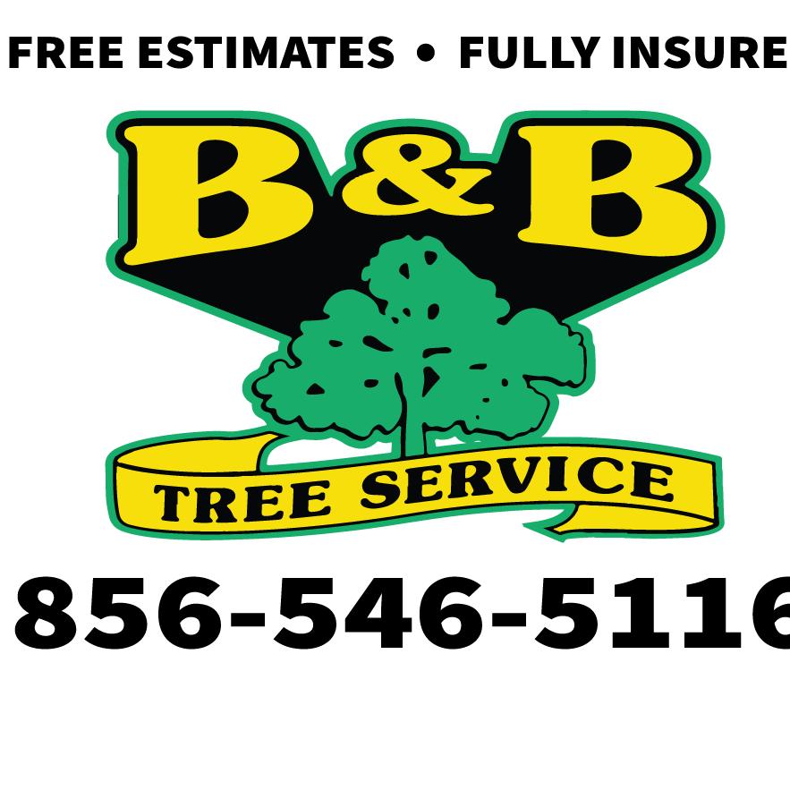 B & B Tree Service