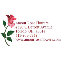 Amour Rose Flowers