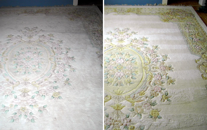 Rx Carpet and Upholstery Cleaning Services image 5