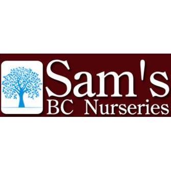 Sam's Bargain Center image 7