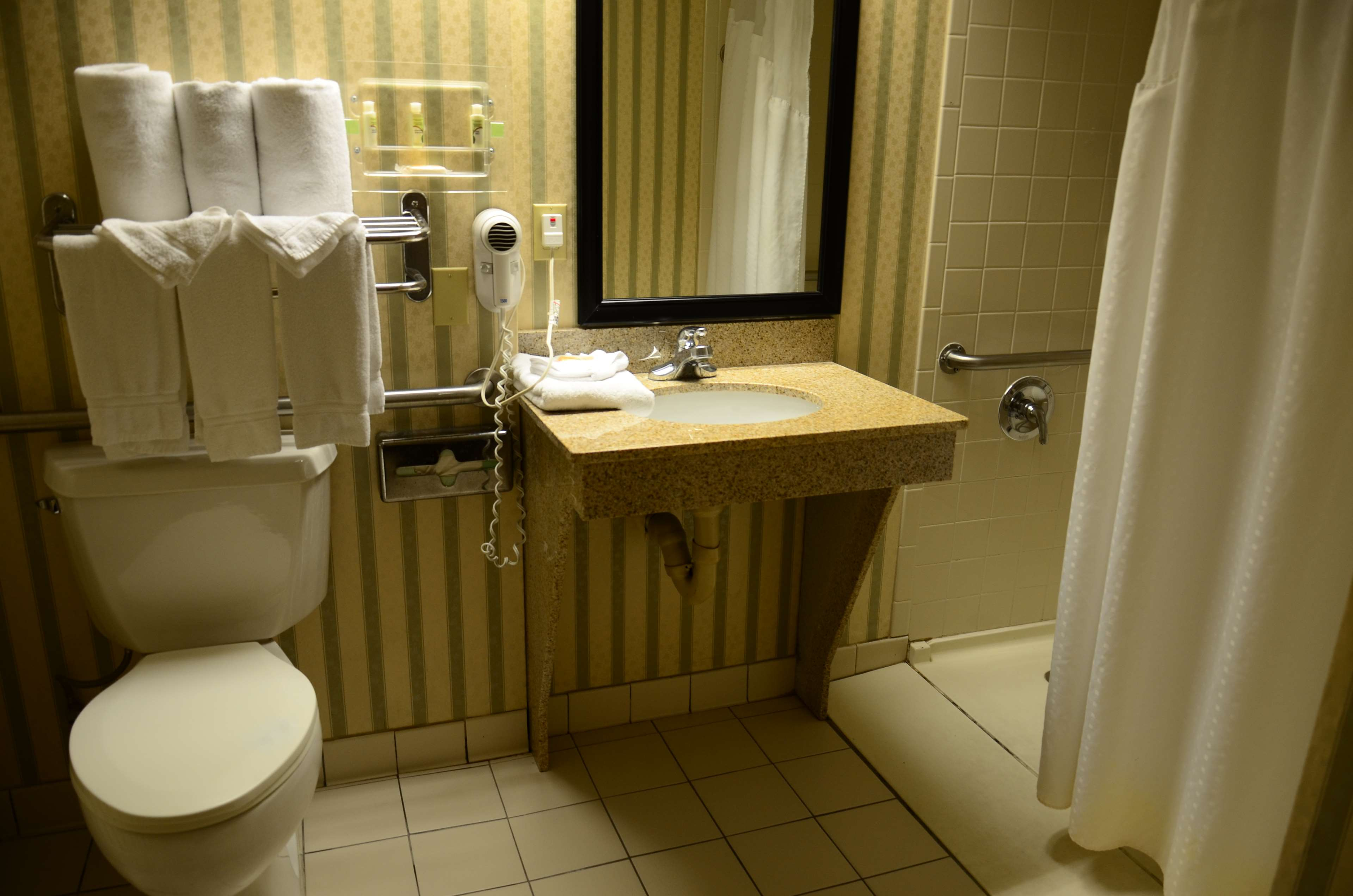 SureStay Plus Hotel by Best Western Kansas City Northeast image 13