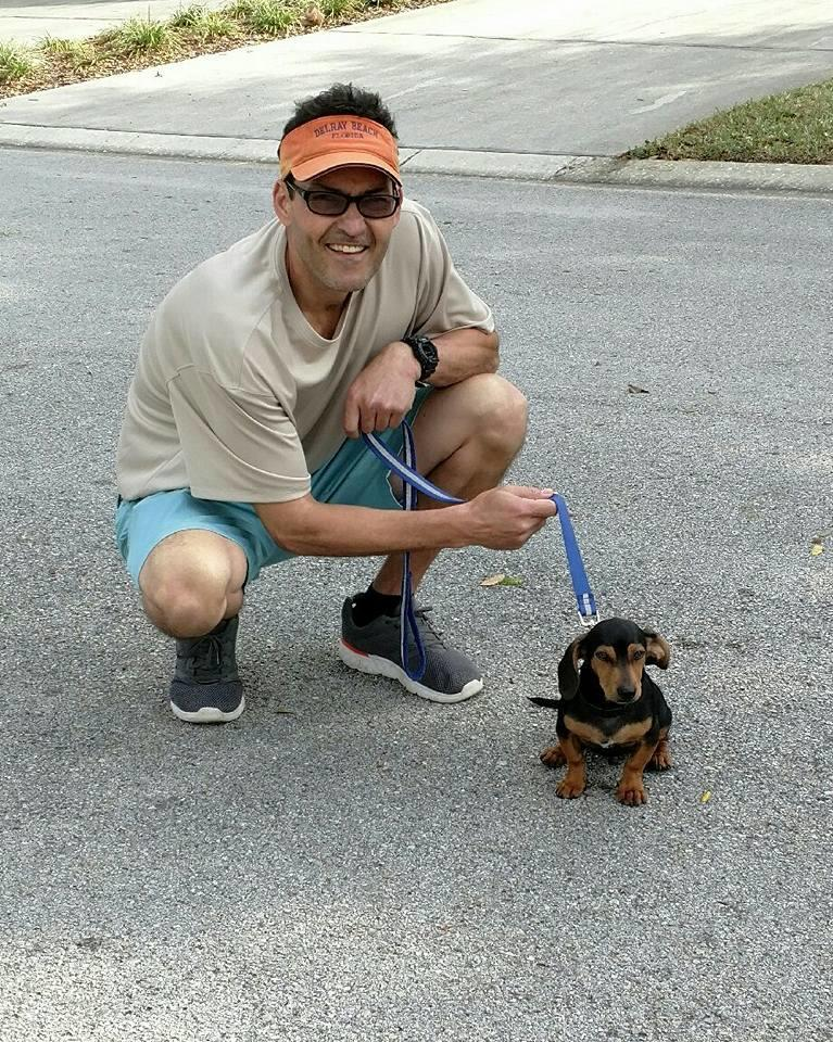 The Dog Man - Pro Dog Training image 0
