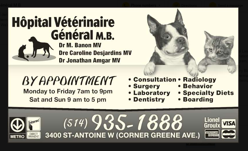 Hôpital Vétérinaire Général M B à Montréal